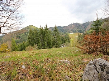 Bodental Waldrandlage Baugrund - Traumhafter Baugrund im Bodental/Windisch Bleiberg