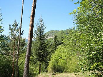 östlich Baugrund Aussicht - Karawankenblick-Alleinlage nur 20 min. von Klgft!