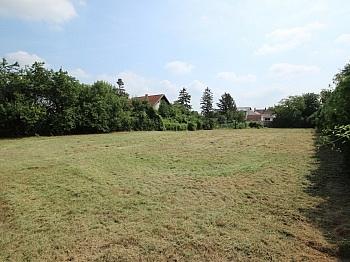 Absolut sonnige Bauland - 2786 m² schöner, sonniger Baugrund in Münchendorf