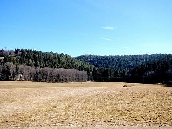 Grundgrenze Grundstück Werschling - Baugrund in Himmelberg/Feldkirchen