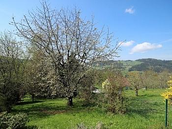 Monatlich Absolute schönes - Absolute Ruhelage in Knappenberg tolle Aussicht