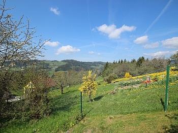 Verwendung jährlich Monatlich - Absolute Ruhelage in Knappenberg tolle Aussicht