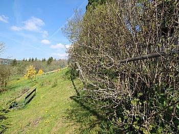 schönes Geräten Althofen - Absolute Ruhelage in Knappenberg tolle Aussicht