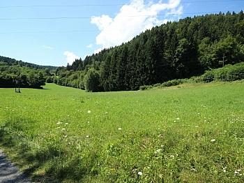 Kornweg sonnige  - Schöner großer 1.931m² in Velden - Fahrendorf