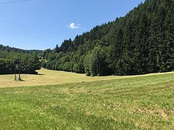 - Schöner großer 1.931m² in Velden - Fahrendorf