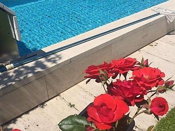 Traumhafte Poolanlage gepflegten - Akazienhofstrasse Villa in bester Lage