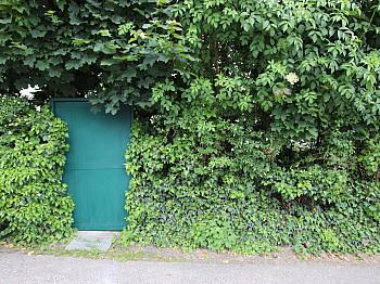 Eigengarten mittels Heizung - Große 2 Zi Wohnung 97m² mit Garten - Waidmannsdorf