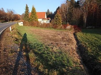 Bauland liegend Fläche - Günstiger 1.155m² Baugrund in Köttmannsdorf