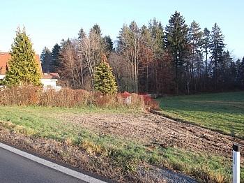 Wasser Süden leicht - Günstiger 1.155m² Baugrund in Köttmannsdorf