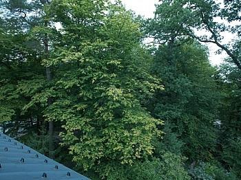 Parkbad etfernt Bindung - Krumpendorf - traumhafte 4-ZiWhg, Kompettsaniert