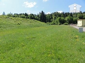 aufgeschlossen Asphaltierung öffentliches - Günstige schöne Baugründe ab 700m² in Köttmannsdorf - Aich
