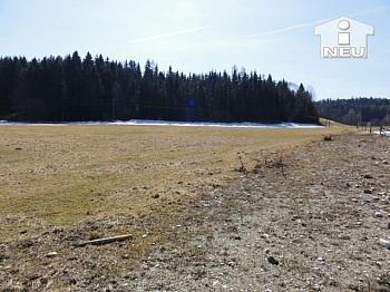 Bankgarantie Grundgrenze verlängert - Schöner Baugrund mit 1.288m² am Radsberg